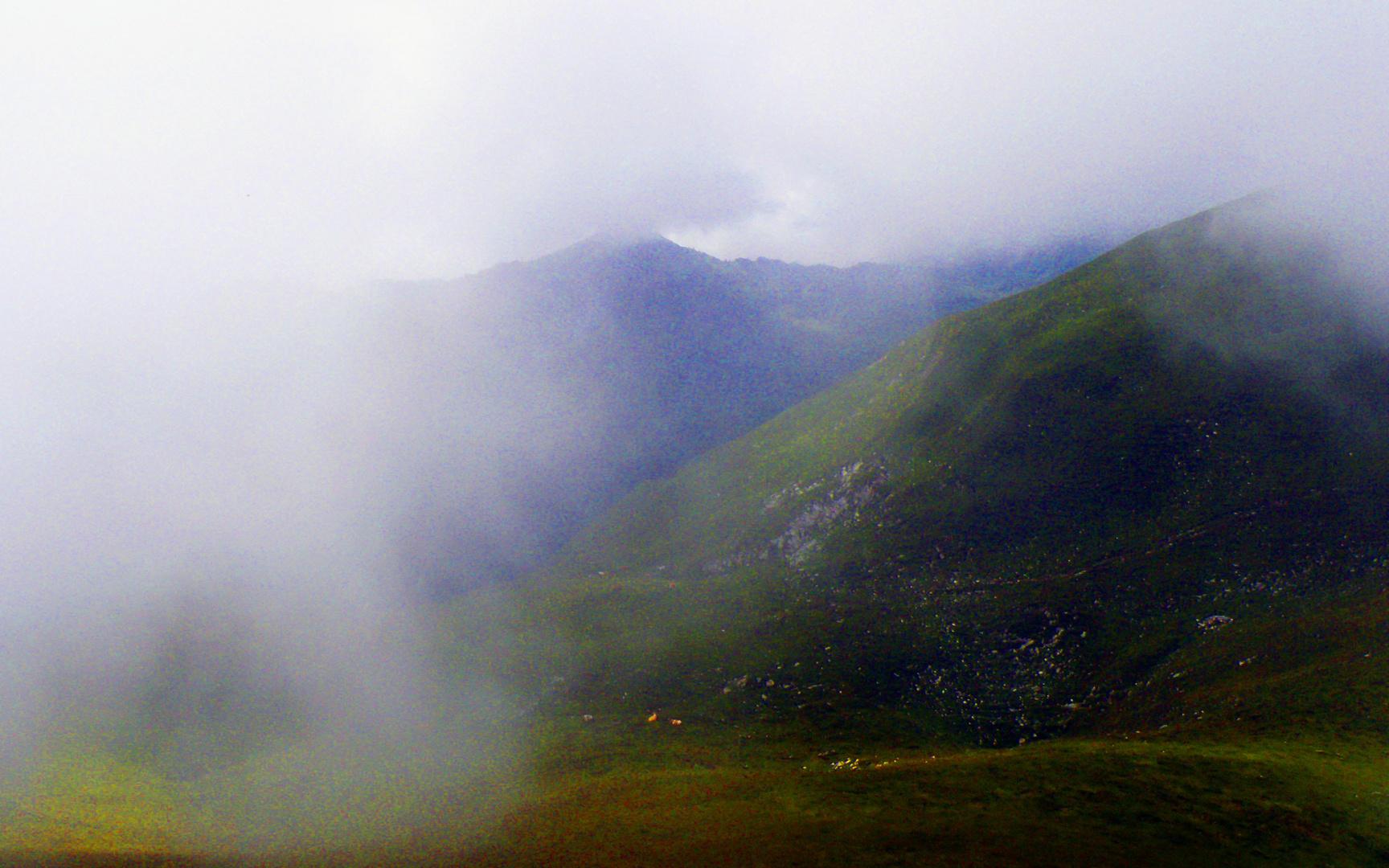 Gantrisch im Nebel
