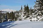 Ganz nahe schaut der Zirbitzkogel von den Seetaler Alpen zu mir.