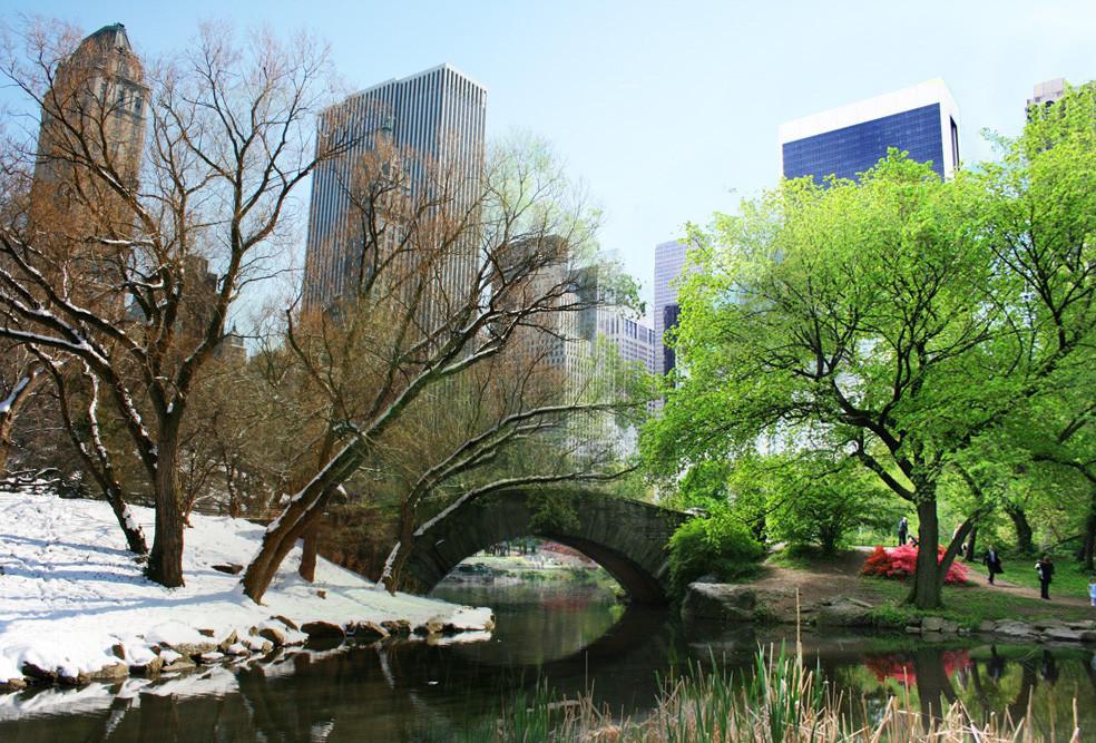 Gapstow Bridge Spring Winter transform __...-i-i-i-i-i-i-i-...__
