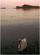 Gardasee-Idylle in der Vorsaison