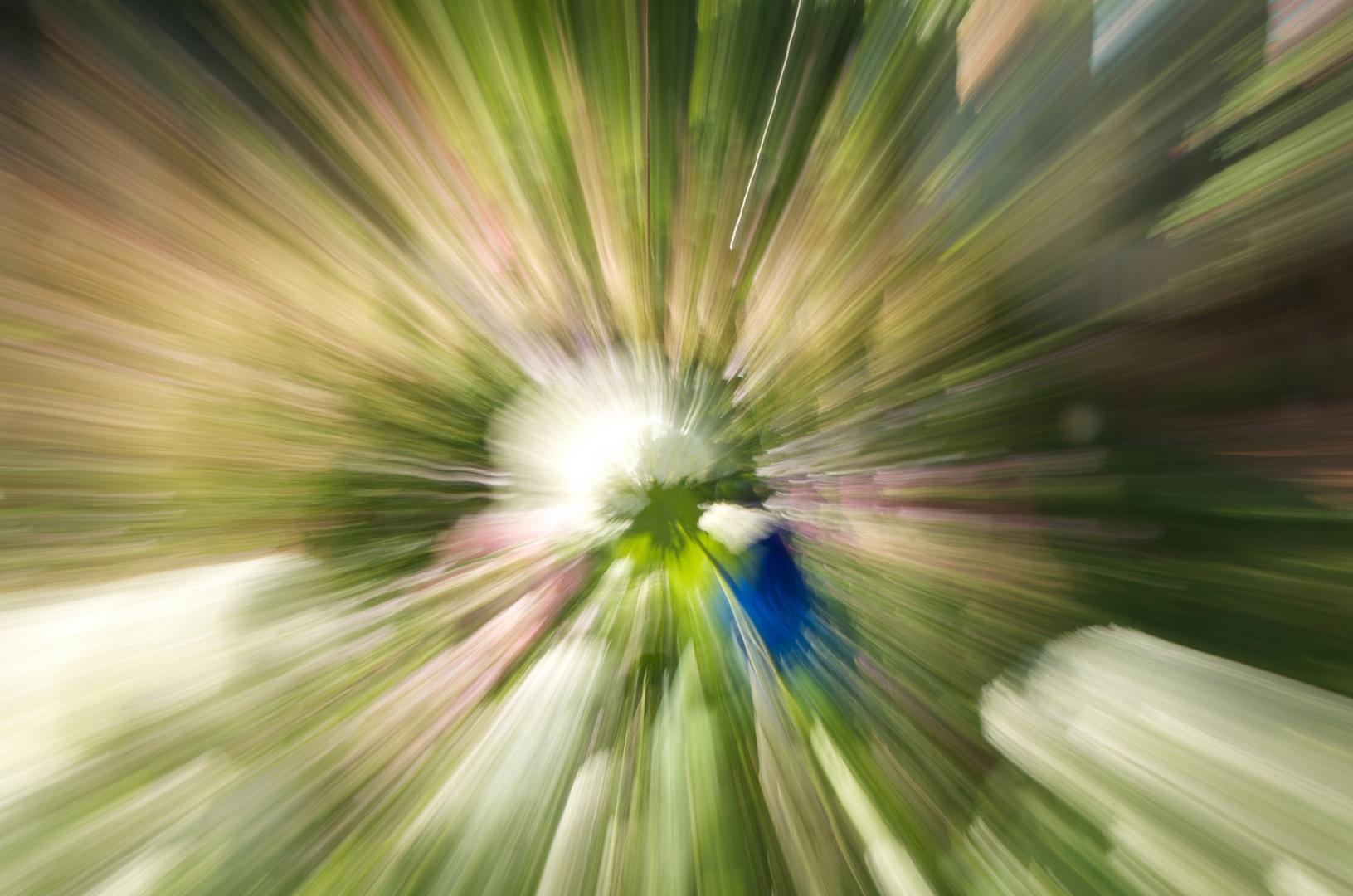 garden in motion