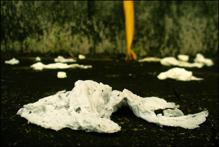 Garden of used tissues after rain