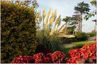 Gardener's refuge.....