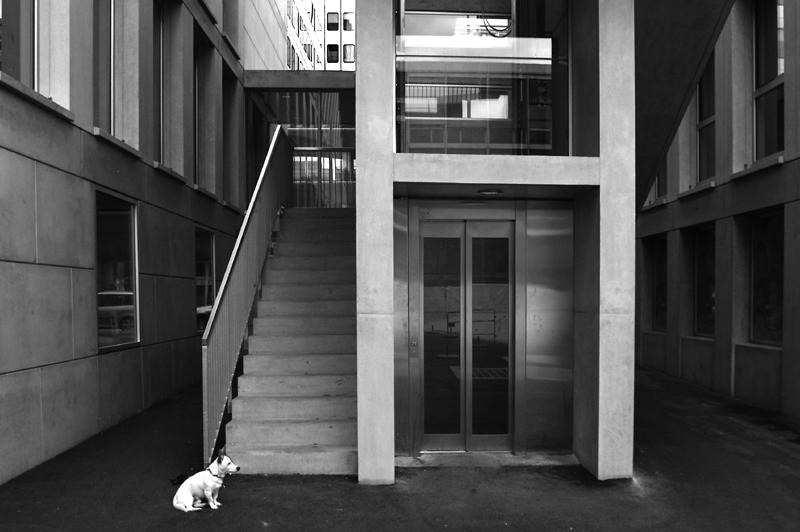 Gardien d'étage (hotel trois étoiles)
