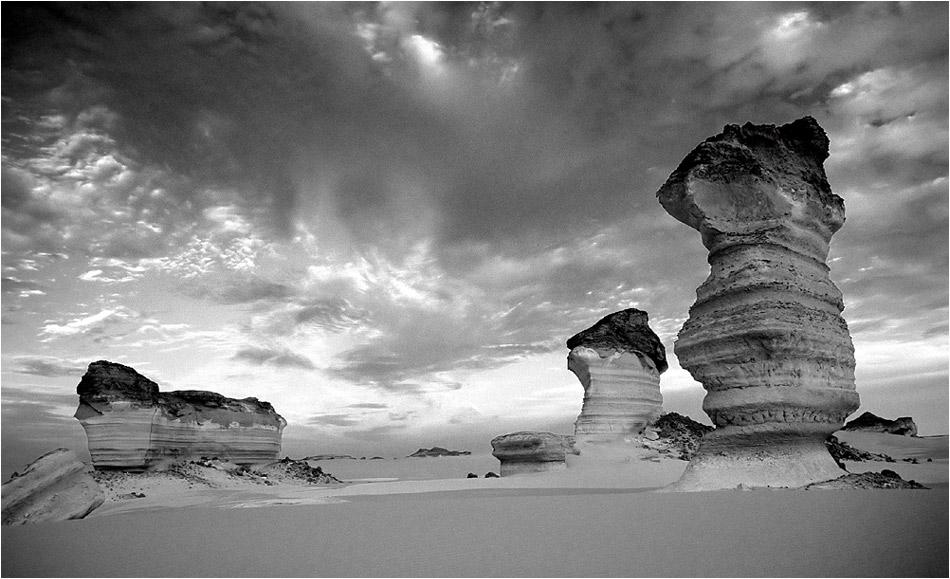 Gardiens du désert