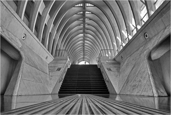 Gare de Liège-Guillemins -2-
