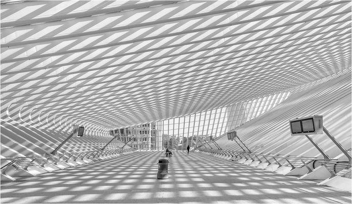 Gare de Liège-Guillemins -6-