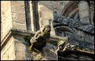 Gargouilles,cathédrale de Rodez,France.