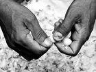 Garlic finger