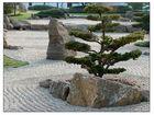 Garten auf Japanisch 4
