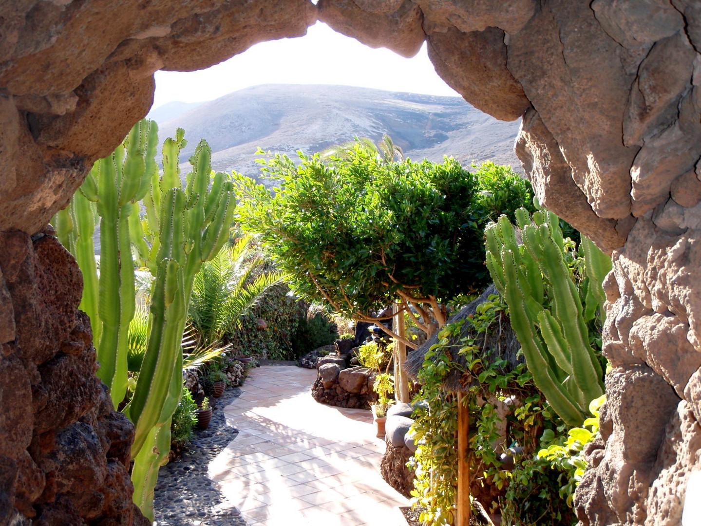 Garten auf Lanzarote