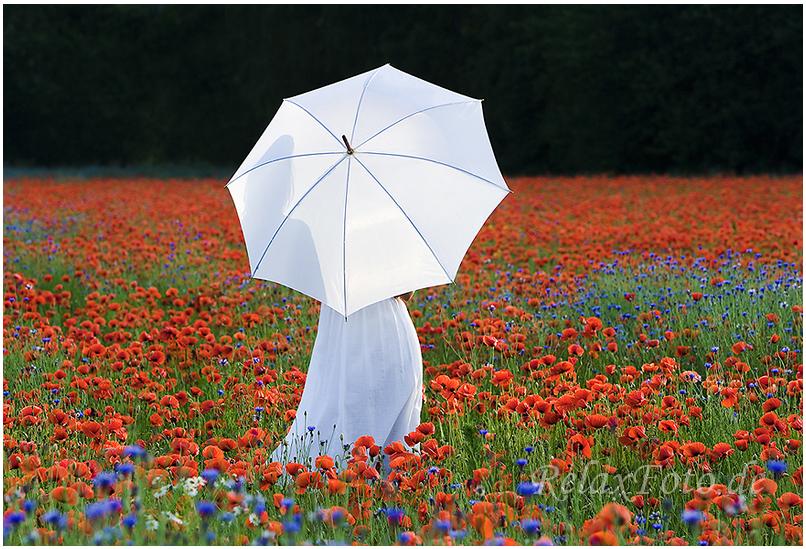 """""""Garten Eden"""" - Junge Frau in weißem Sommerkleid mit Schirm im Mohnfeld"""