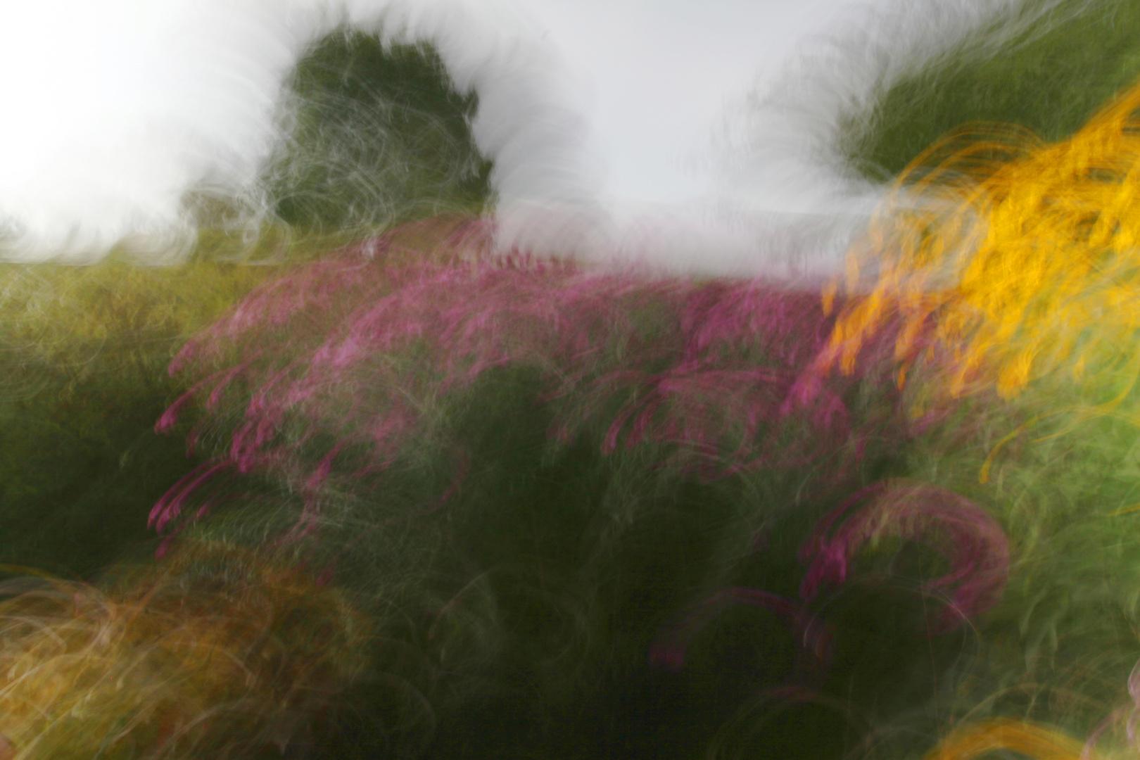 Garten-Expression