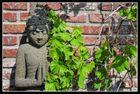 Garten-Kosmos