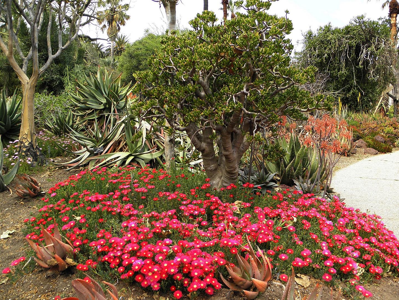 ---Garten Kunst--1---