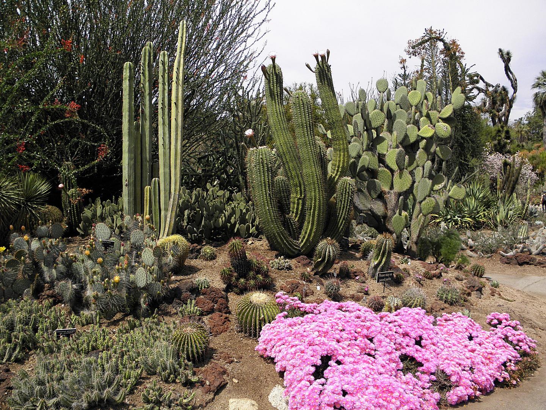 ---Garten Kunst--3--