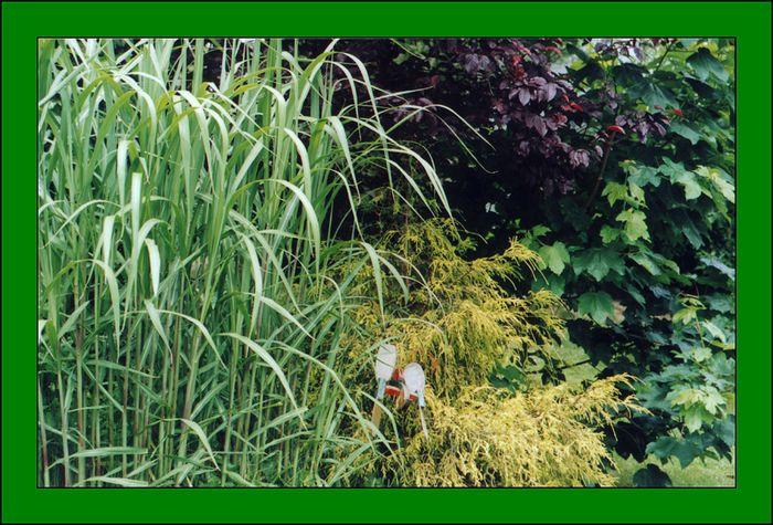 Garten mit Holzviech