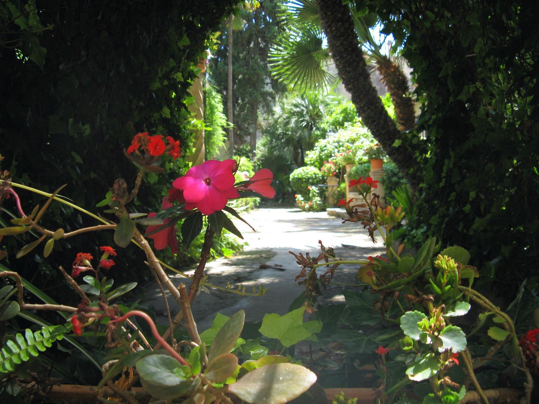 Gartenanlage in Mallorca