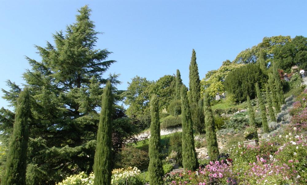 Gartenanlagen auf der Blumeninsel
