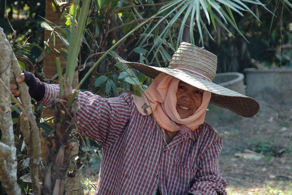 Gartenfrau aus Chiang mai.