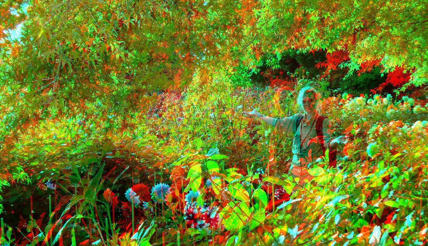 Gartenfreude (3D-Foto)