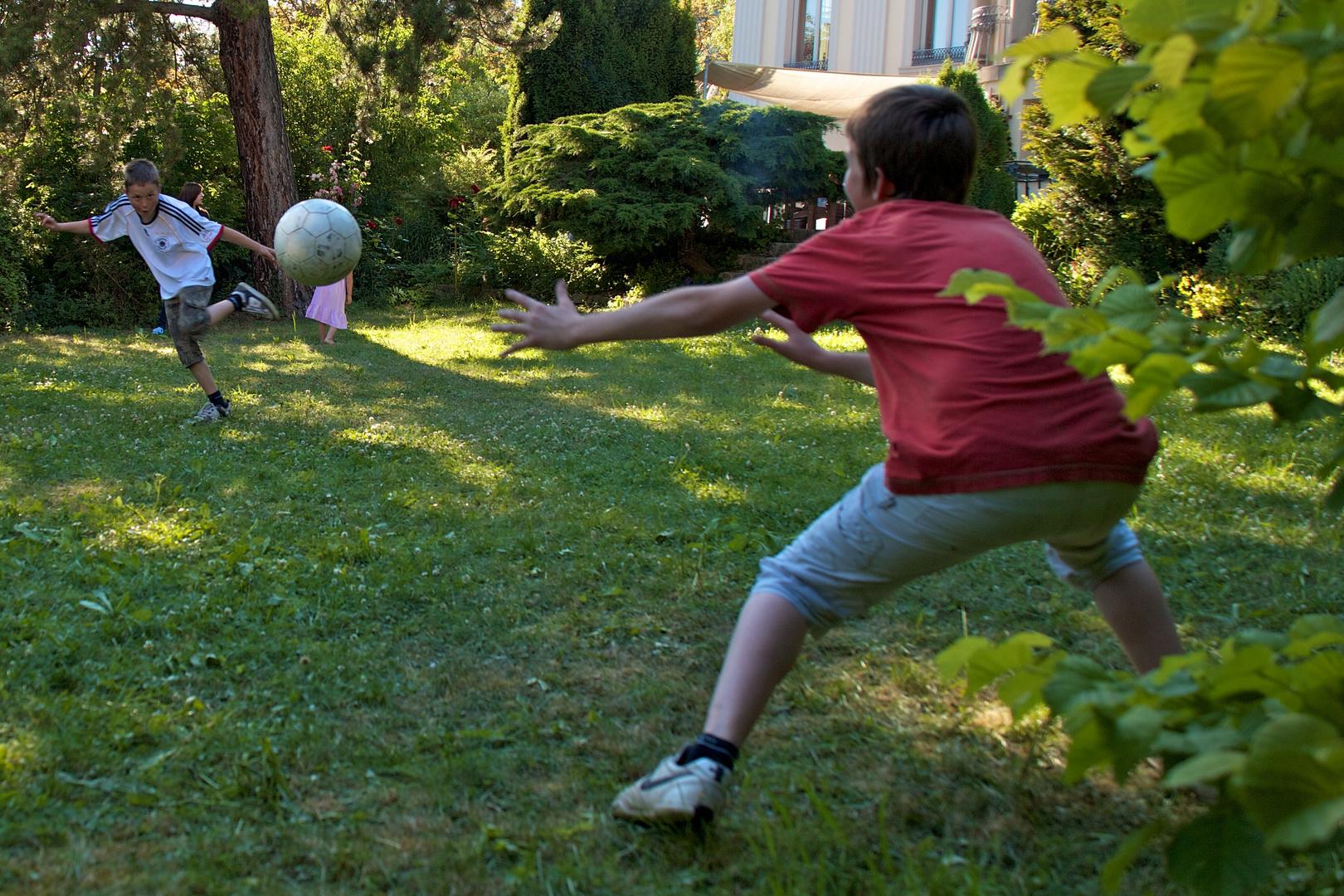 Gartenfussball