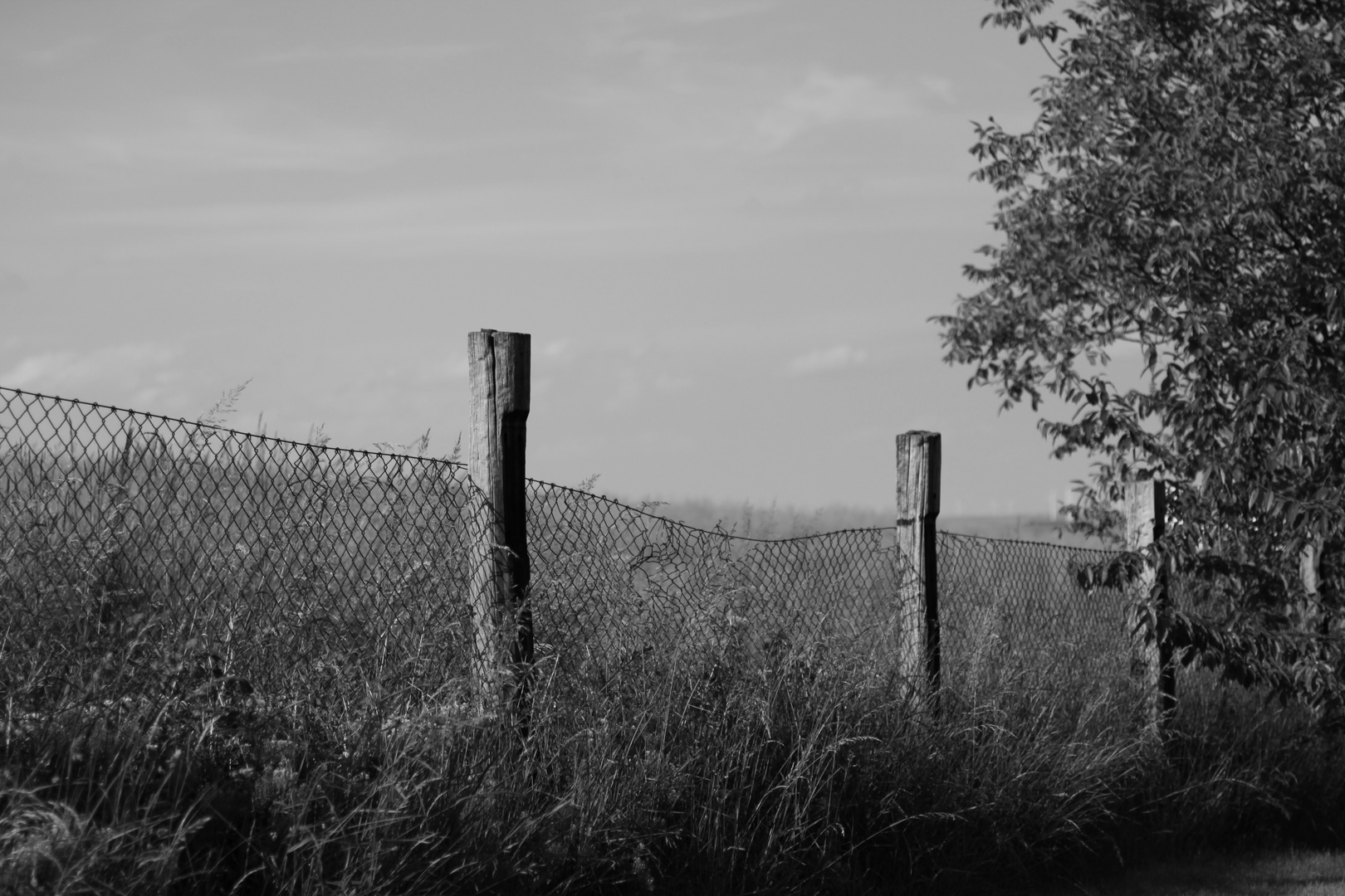 Gartengrenze