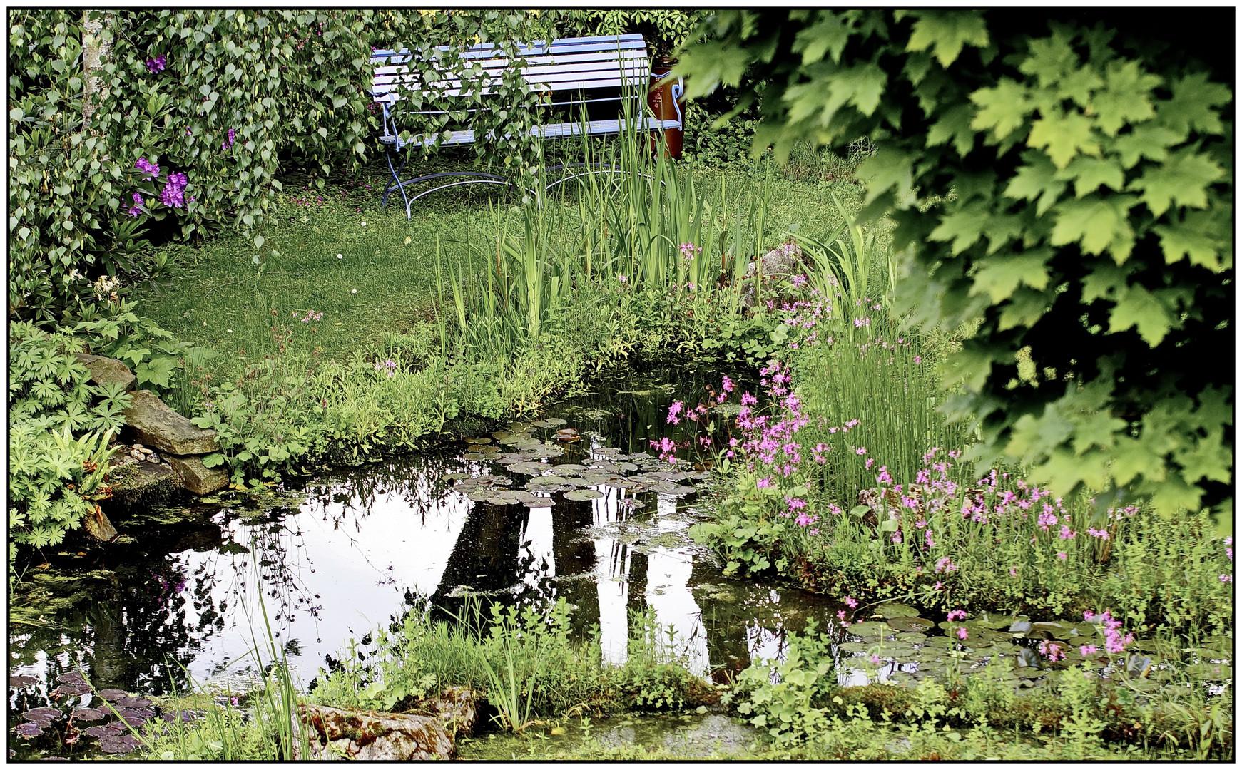 Gartenteich Ende Mai