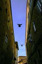 Gasse in Salamanca - Spanien
