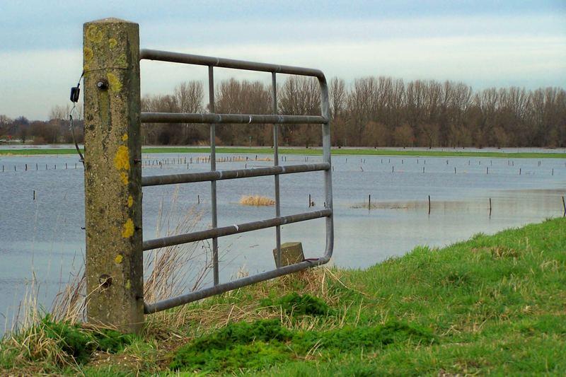 Gate...