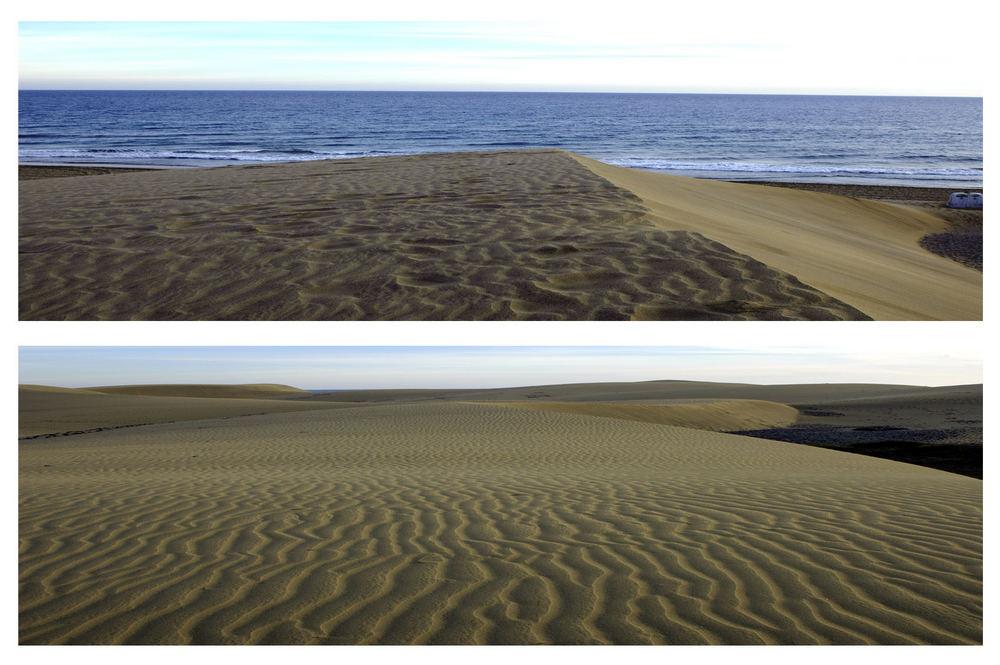 GC Landscapes 3