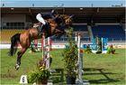 Geballte Konzentration bei Pferd und Reiter