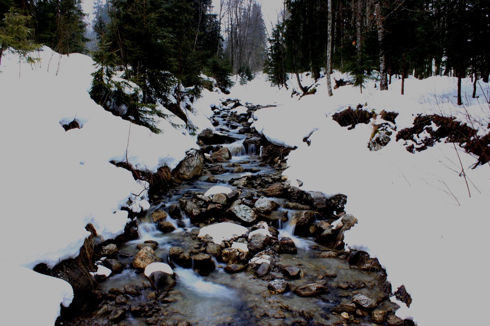 Gebirgsfluss im Zillertal