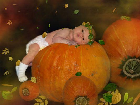 Geboren im Herbst