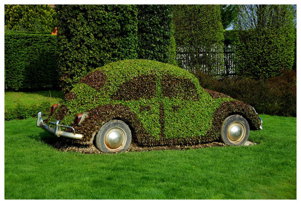Gebrauchter VW Käfer....