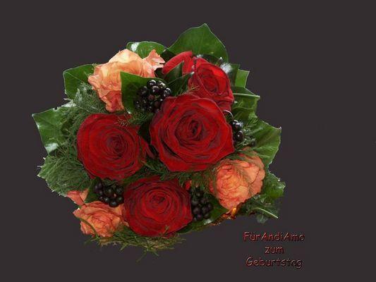 GeburtstagsGlückwünsche für Andi Amo