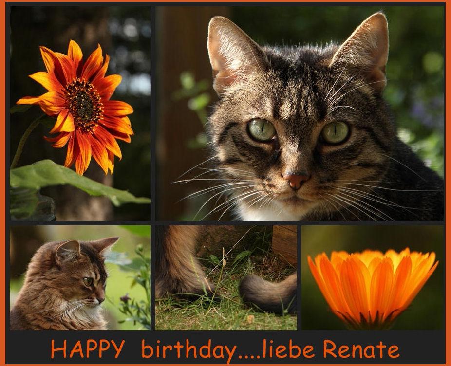 Geburtstagsgrüße für Renate.......