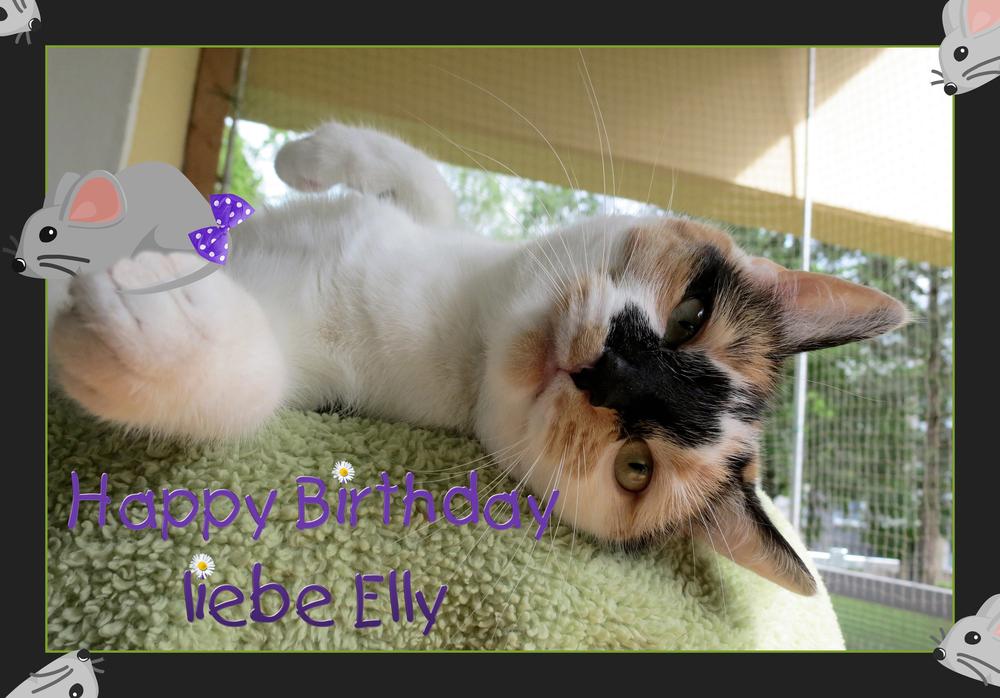 Geburtstagsmäusle für Elly
