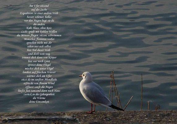 Gedanken am Ufer...