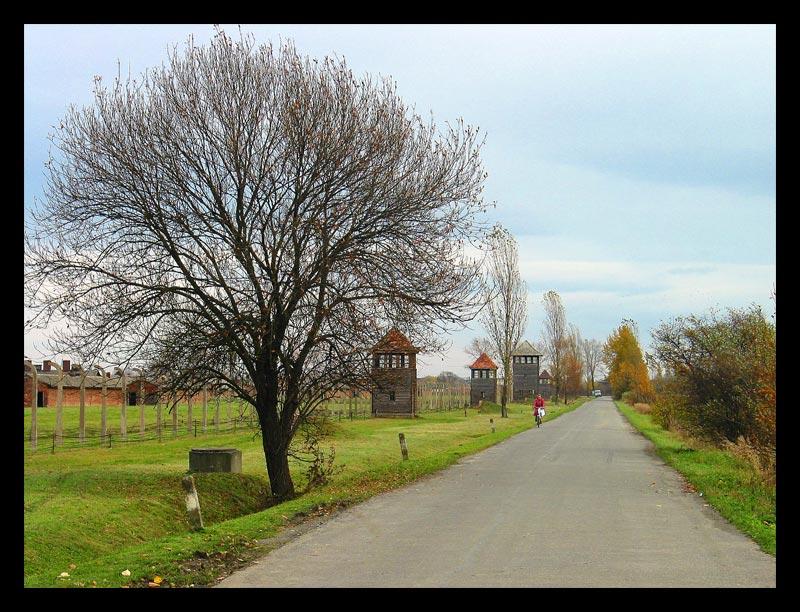 Gedenken an die Shoah 6/3 - Auschwitz II (Birkenau)