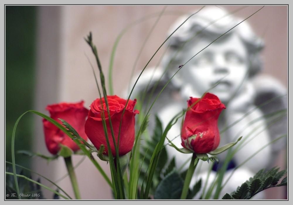 Gedenkplatz für nicht beerdigte Kinder