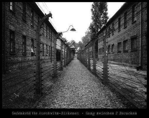 Gedenkstätte Auschwitz-Birkenau * Gang zwischen 2 Baracken