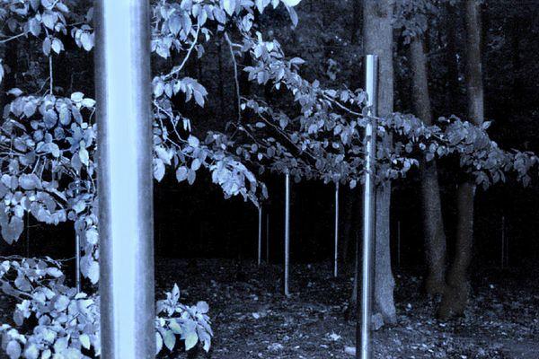 Gedenkstätte Buchenwald 2