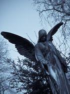 Gefallener Engel