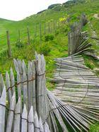 Gefallener Holzzaun in Étretat (Frankreich)