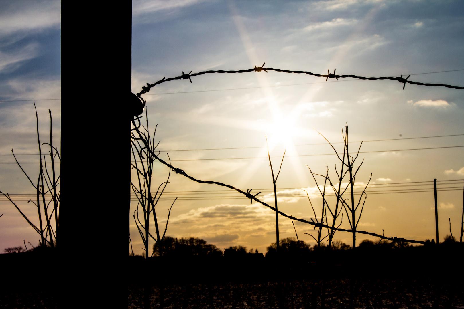 Gefangene Sonne