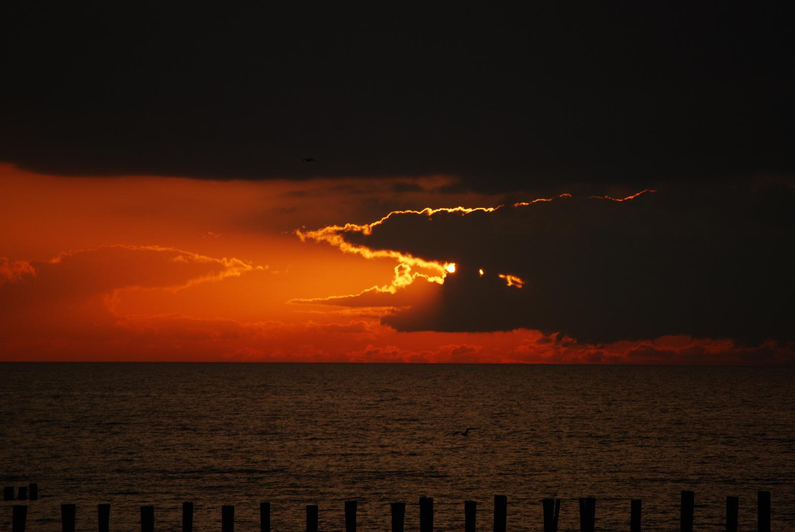 Gefräßige Wolke
