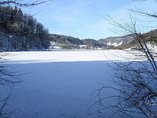Gefrohrener See in der Schweiz