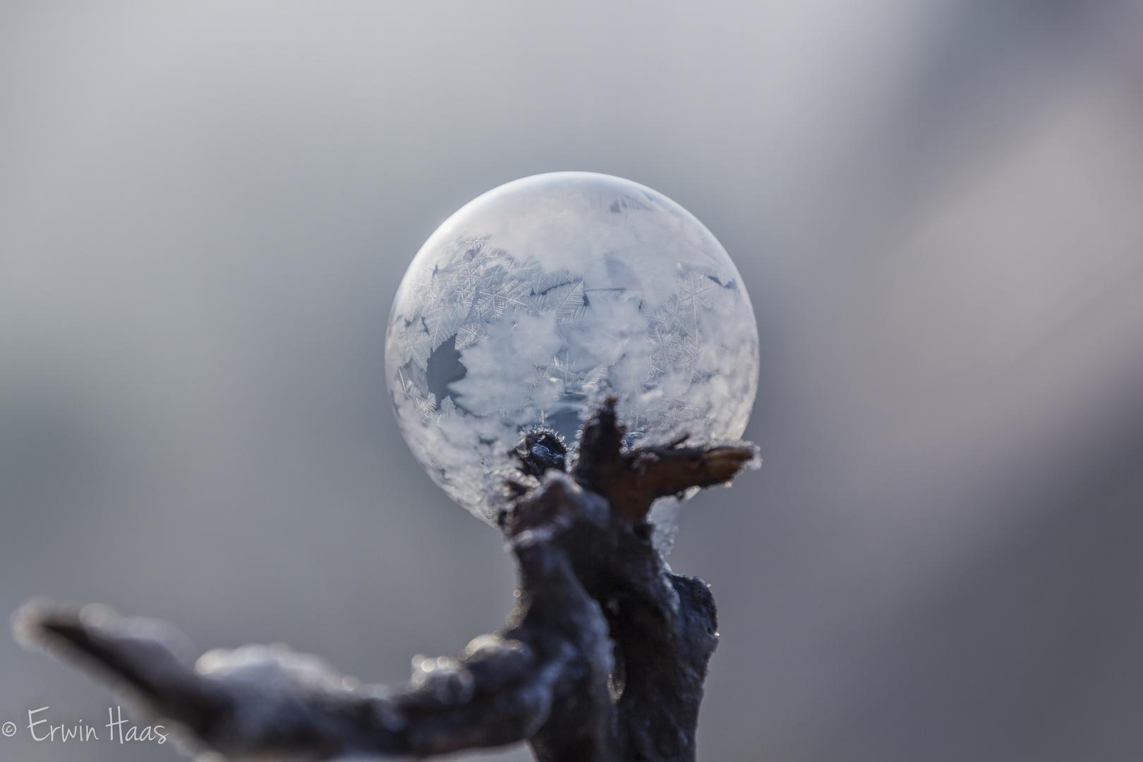 Gefrorene seifenblase foto bild gefroren seifenblasen for Seifenblasen auf englisch