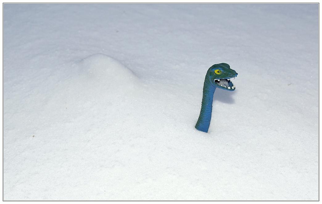 Gefühlte acht Meter Neuschnee